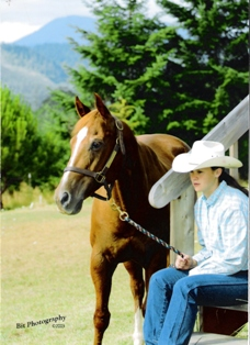 learn about training horses